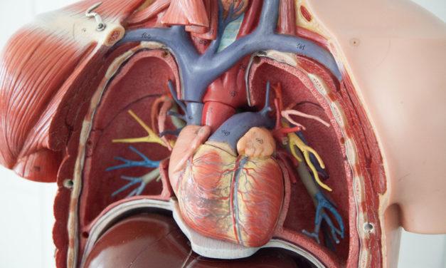 Existuje úzký vztah mezi nedostatkem vitaminu D a kardiovaskulárními chorobami
