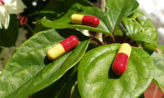 Suplementace vitaminem D snižuje příznaky u pacientů trpících sennou rýmou